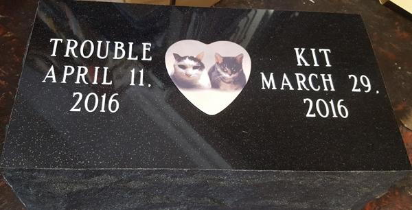 pets-trouble-kit